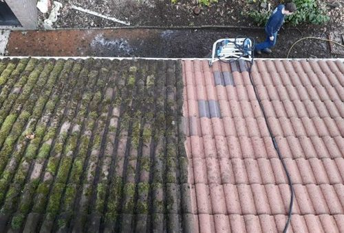 A guide to roof moss removal